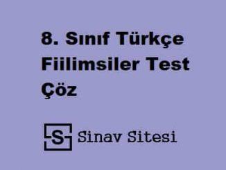 8. Sınıf Türkçe Fiilimsiler Test Çöz