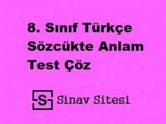 8. Sınıf Türkçe Sözcükte Anlam Test Çöz