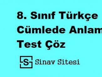 8. Sınıf Türkçe Cümlede Anlam Test Çöz