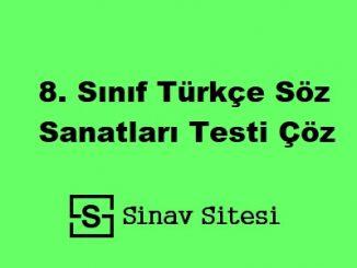 8. Sınıf Türkçe Söz Sanatları Testi Çöz