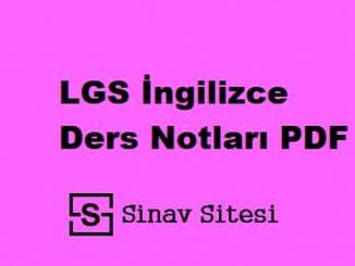 LGS İngilizce Ders Notları PDF İndir