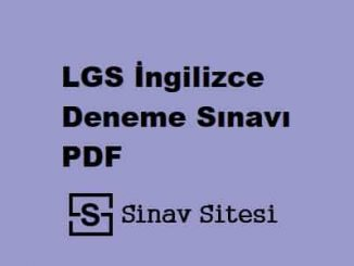 LGS İngilizce Deneme Sınavı PDF İndir
