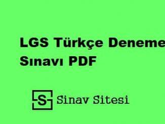 LGS Türkçe Deneme Sınavı PDF İndir